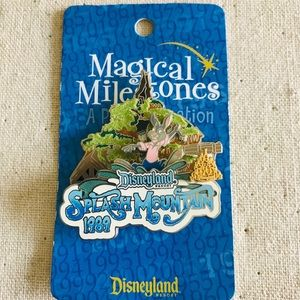 Disney Pin Magical Milestones Splash Mountain